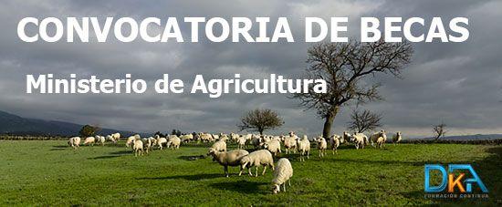 Convocatoria Becas Agricultura